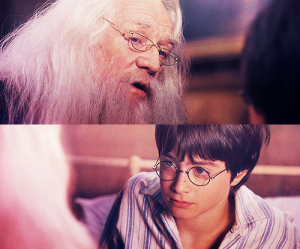 harry and dumbledore... the only home harry potter ever knew