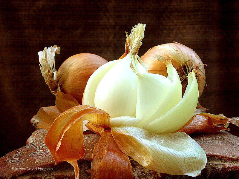 peeling the onion: what's the truth about you?