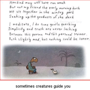 sometimes creatures guide you