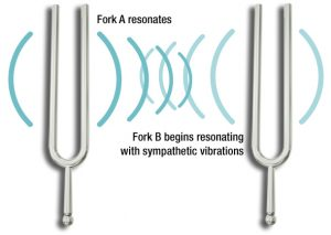 entrainment tuning forks