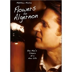 flowers for algernon... loss is more painful than never having it