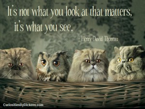 Thoreau_what-matters