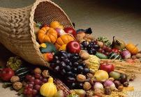 Thanksgiving_bounty