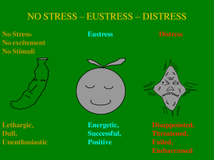 stress-eustress-distress