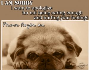 I-Am-Sorry-I-Want-To-Apologize-For-Not-Being-Caring-Enough-And-Hurting-Your-Feelings-Pls-Forgive-Me-Quote-For-Saying-Sorry