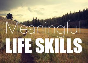 Meaningful-Life-Skills-Banner