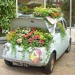 car-planter