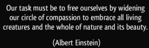 quote-our-task-must-be-to-free-ourselves-by-widening-our-circle-of-compassion-to-embrace-all-living-albert-einstein-56413
