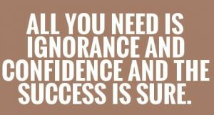 all-you-need-is-ignorance-and-confidence-and-the-success-is-sure