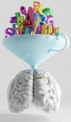 brain-funnel