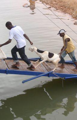 niger-river-boat-trip-an-unwilling-passenger1