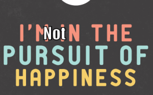 I am not in the pursuit of happiness