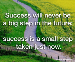 success-will-never-be-a-big-step