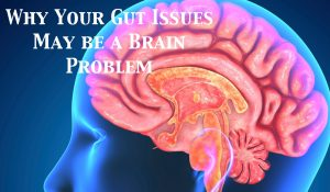 why-your-gut-issues-may-be-a-brain-problem