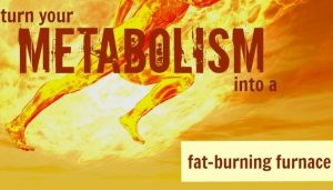 fat burning body