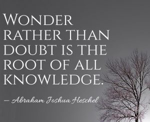 wonder-rather-than-doubt-is-the-root-of-all-knowledge-abraham-joshua-heschel