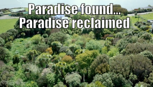 paradise lost and found
