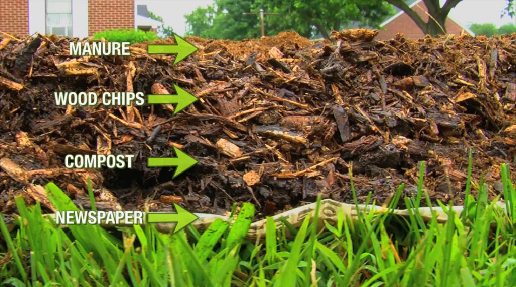 the woodchip gardening method