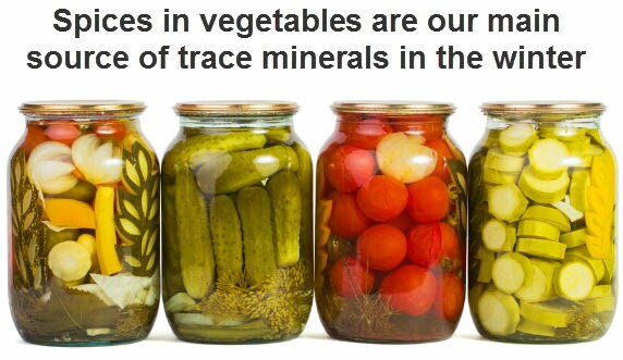 spices in pickles are our main source of trace minerals in the winter