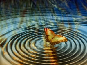 butterfly effect of decisions