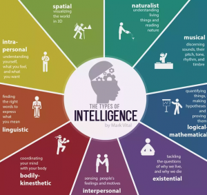 intelligence has many components