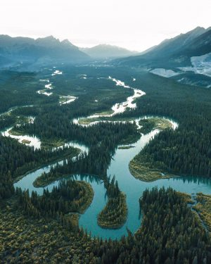 the path to success is to go with the winding river