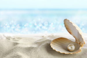 the goal is to find the pearl hidden in the shell