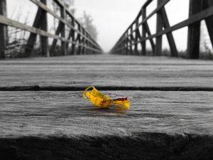 walk-the-bridge-with-me coaching