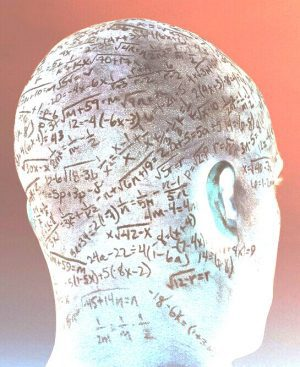 the fallacy of the brain and intelligence