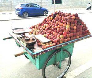 selling fruit door to door