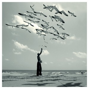 Dreams_with_the_seagulls_by_foureyes