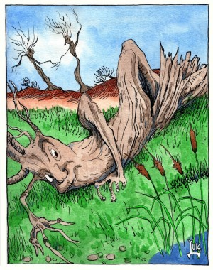 Oak-reed