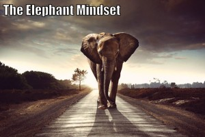 The-Elephant-Mindset