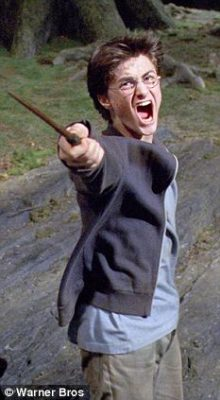 harry potter and his wand