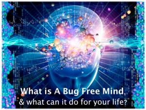 bug-free-mind