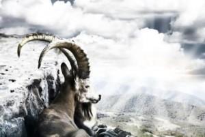 conquering-capricorn