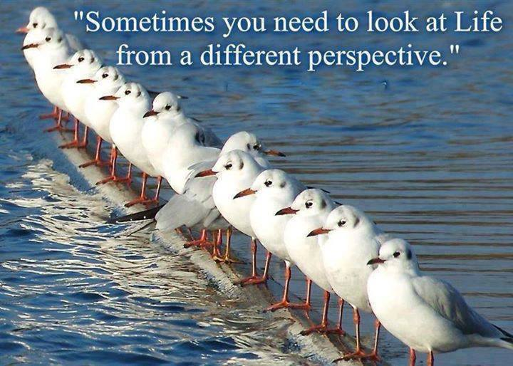 different-perspective-2