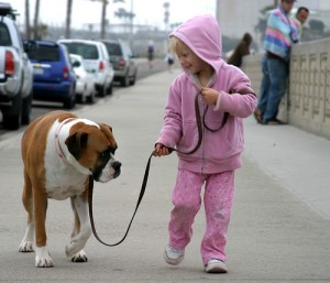 embrace the doom meaning: don't resist. get off the leash