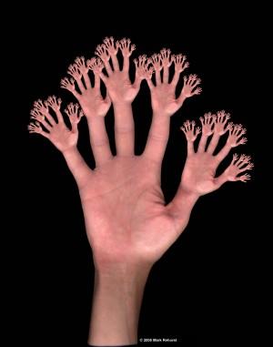 fractal_hands_c