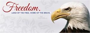 freedom_eagle2