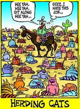 coaching is like herding cats