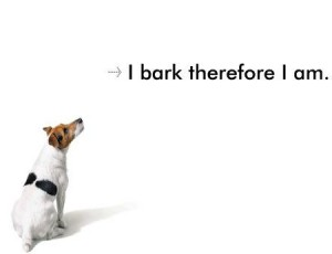 I bark therefore I am