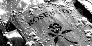 rosebud_sled, the symbol of paradise lost