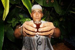 "ayahuasca offered by a ""shaman"""