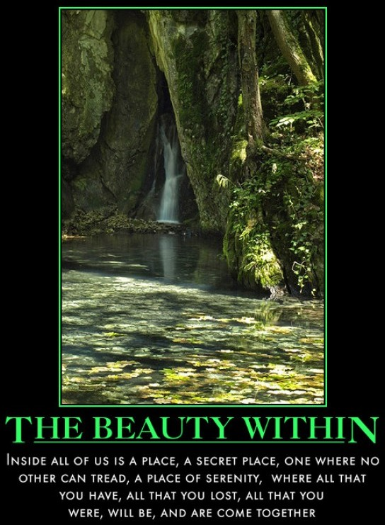 the-beauty-within-waterfall-beauty-place-demotivational-poster-1281499021