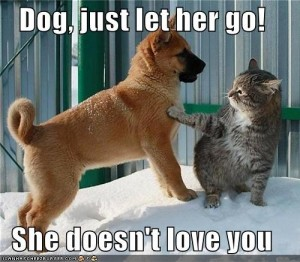 unrequited-love-dog