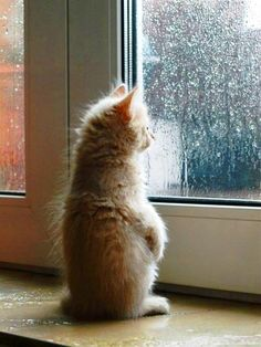 waiting-for-good-weather